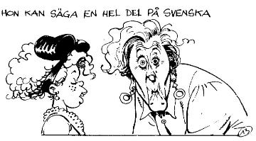 schwedisch lernen assimil zeichnung